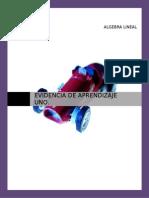 ALI_U1_EU_ALCM.doc