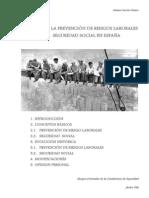 Trabajo 2 Historia de LPRL y SS.pdf