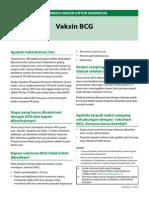IVO-BCG.pdf
