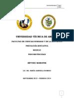 Psicomotricidad Contenidos.pdf