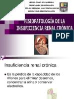 Insuficiencia_Renal_Cronica-1.ppt