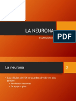 NEUROCIENCIAS-neurona.pptx