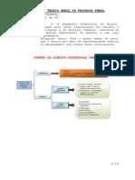 1ª-AULA-PROC.-PENAL-AMBIENTAL.pdf