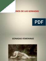 6-fisiopatologia-de-las-gonadas.ppt
