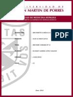 INFORME N°09.pdf