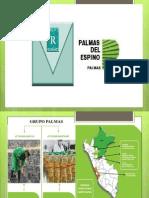 DIAPO palmas.pptx