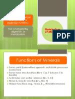 12.Metabolisme Mineral.gizi.Juni 2014