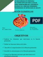 FUNCION GLOMERULAR PARA EXPONER.ppt