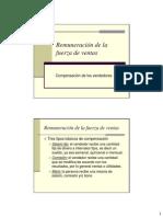 Remuneracion Fuerza de Ventas.pdf
