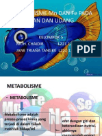 Metabolisme Mn Dan Fe Pada Ikan Dan Udang