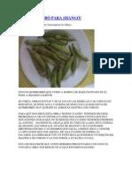 EL QUIMBOMBÓ PARA.docx