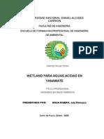 Wetland para Aguas Ácidas en Yanamate nilton.doc