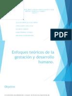 Enfoques teóricos de la gestación y desarrollo humano.pptx