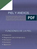 PIEL Y ANEXOS.ppt