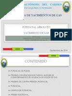 Potencial de yacimiento de gas.pptx