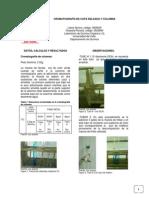 CROMATOGRAFIA-DE-CAPA-DELGADA-Y-COLUMNA info.docx