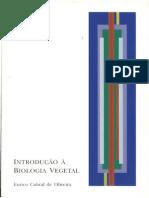Os Padrões de Reprodução Nas Plantas e Nos Fungos (Cap. v, Oliveira, 2003)