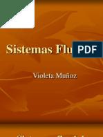 Sistemas_Fluviales.ppt