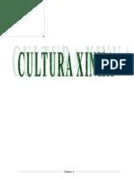 TRABAJO LOS XINKAS.docx