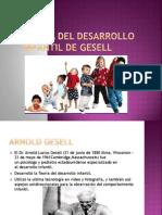 Teoría del crecimiento de gesell.pptx
