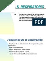 28.- ESTRUCTURA Y MECÁNICA .ppt