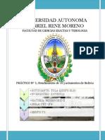 PRACTICO Nº1 - campos petroleros de Bolivia.docx