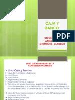CAJA Y BANCO.pdf
