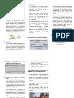 LAS BAMBAS.pdf