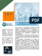 Celdas_combustible_microbianas_con_biocatodo_Marisol_Delgado (1).pdf