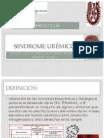 SINDROME UREMICO - ERC.pdf