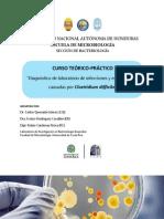 Programa Curso en Honduras - 2014.pdf