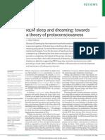 REM Dreaming Protoconsciousness