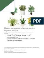 plantas que ayudan a limpiar hogar .pdf