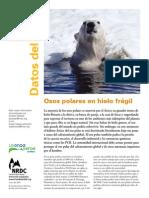 Osospolares.pdf