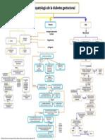 25. Fisiopatología de la diabetes gestacional.pptx