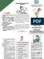 control prenatal.doc