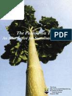 Paulownia Booklet