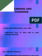 04 skim scan