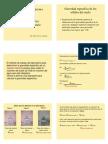 Ensayo Gravedad específica de los sólido.pdf