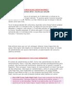 AYUNO Y GANANCIA MUSCULAR JMaxwell.pdf