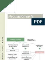 Control glicemia.pptx