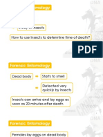 3A-3 Decomposing Bodies II (Forensic Entomology) v1.pdf