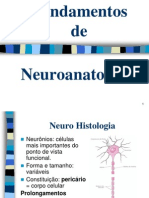 Neuro cap. 1.ppt