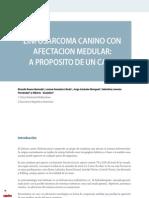 Cv_36_linfosarcoma Canino Con Afectacion Medular