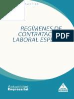 lab-08-regimenes-contratacion.pdf