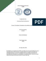 ensayo mobiliario I.docx