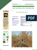 CultivoCaqui-Botanical.pdf