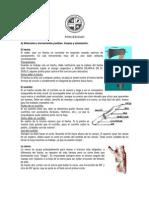 Pionerismo.pdf