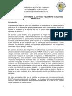 Practica No 6 -Transporte de electrones.pdf