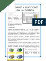 informe inorganica halogenos (5).docx